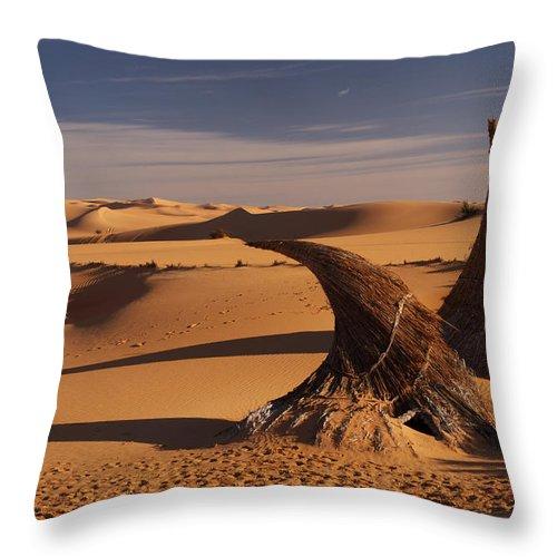 Desert Throw Pillow featuring the photograph Desert Luxury by Ivan Slosar