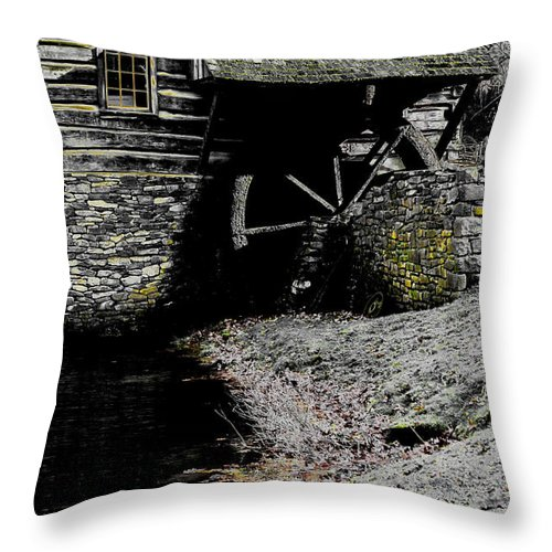 Evening Throw Pillow featuring the photograph Devoid by Cindy Roesinger
