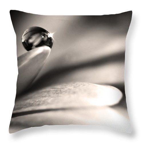 Flowers Throw Pillow featuring the photograph Dew Drop In Flower Petal by Sumit Mehndiratta