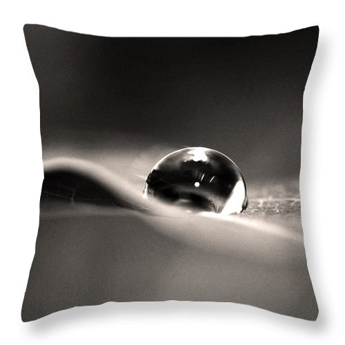 Flowers Throw Pillow featuring the photograph Dew Drops 2 by Sumit Mehndiratta