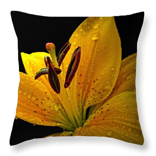 Nature Throw Pillow featuring the photograph Dew On The Daylily by Debbie Portwood
