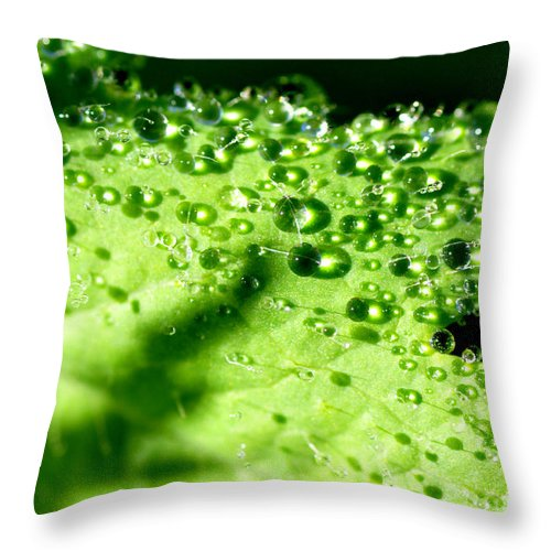 Dew Throw Pillow featuring the photograph Dewdrops On Leaf by Thomas R Fletcher