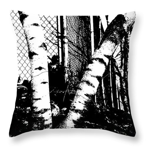 Birch Throw Pillow featuring the photograph Dichotomy by Luke Moore