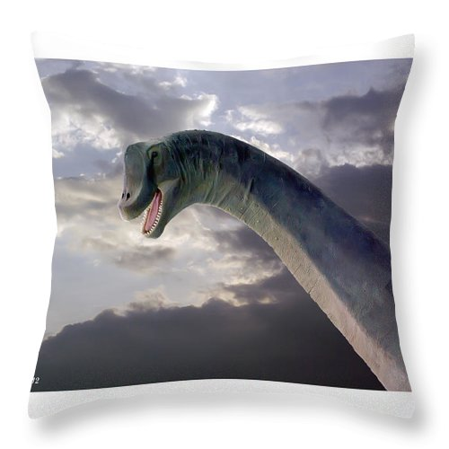 2d Throw Pillow featuring the photograph Dinosaur Sky by Brian Wallace
