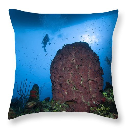 Diver Throw Pillow featuring the photograph Diver And Barrel Sponge, Belize by Todd Winner