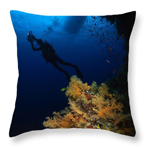 Diver Throw Pillow featuring the photograph Diver And Soft Coral, Fiji by Todd Winner
