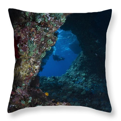 Diver Throw Pillow featuring the photograph Diver At Boo Windows In Raja Ampat by Todd Winner