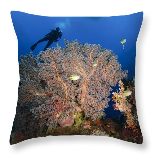 Diver Throw Pillow featuring the photograph Diver Swims Over Sea Fans, Indonesia by Todd Winner