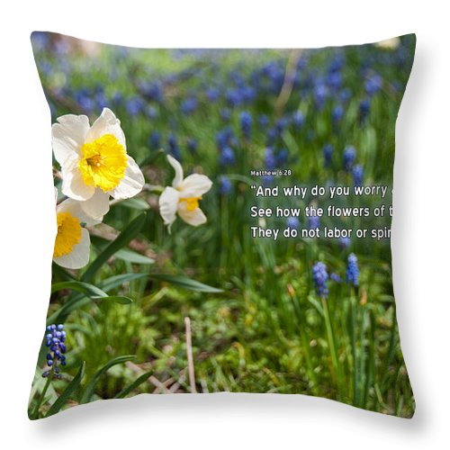Bible Throw Pillow featuring the photograph Do Not Worry by David Arment