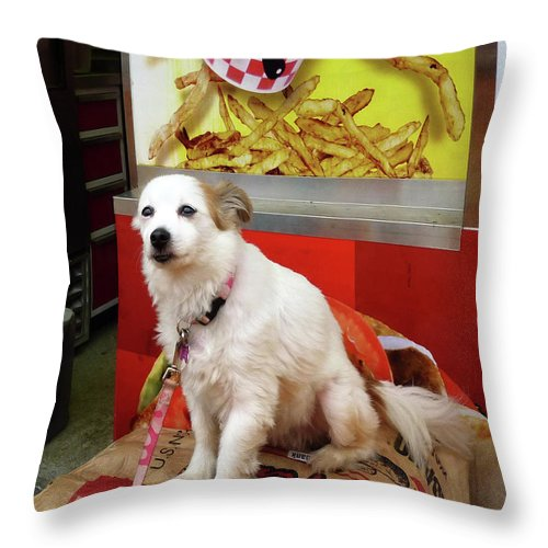 Dog Throw Pillow featuring the photograph Dog At Carnival by Susan Savad