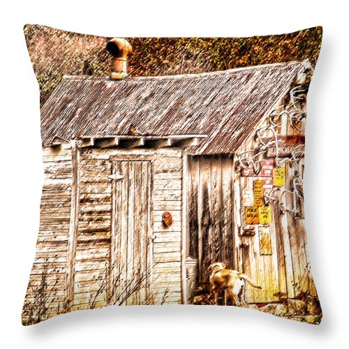 Hunting Cabin Throw Pillow featuring the photograph Dogs Back At The Cabin by Randall Branham