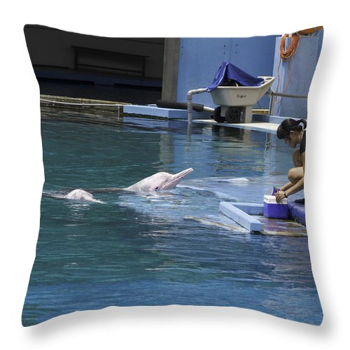 Asia Throw Pillow featuring the photograph Dolphin And Trainer At The Underwater World In Sentosa In Singap by Ashish Agarwal