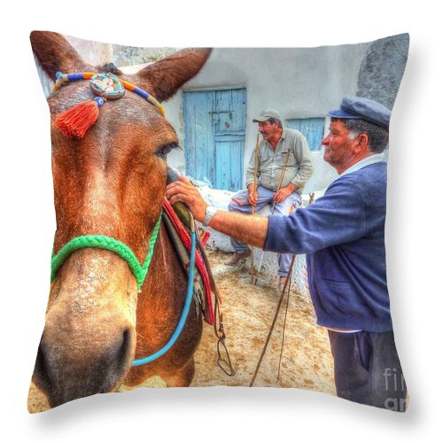 Donkey Throw Pillow featuring the photograph Donkey Ride by Michael Garyet