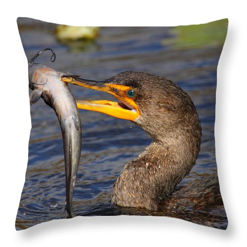 Cormorant Throw Pillow featuring the photograph Double-crested Cormorant Fishing by Bruce J Robinson