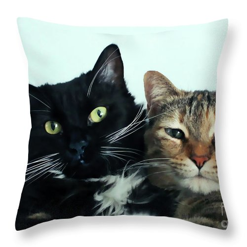 Black Cat Throw Pillow featuring the photograph Double Trouble 1 by Nora Martinez