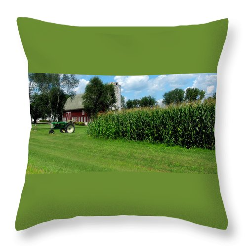 Farm Throw Pillow featuring the photograph Down On The Wisconsin Farm by Ms Judi
