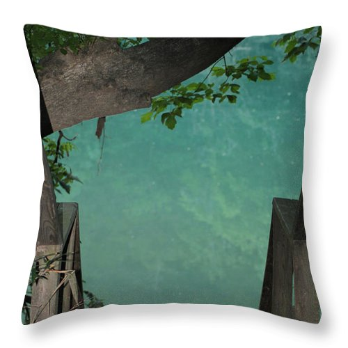Water Throw Pillow featuring the photograph Down To The Creek by Karen Wagner