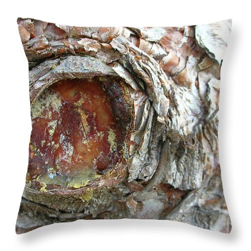 Tree Throw Pillow featuring the photograph Dragon Eye by Guy Whiteley