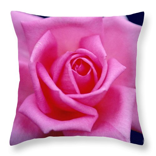 Rose Throw Pillow featuring the photograph Dream Rose by Byron Varvarigos