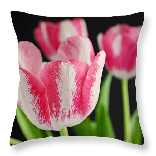 Tulip Throw Pillow featuring the photograph Dreamers by Melanie Moraga