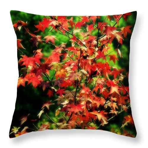 Fall Throw Pillow featuring the photograph Dreamy Fall Leaves by Barbara Northrup