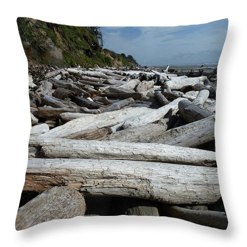 Seascape Throw Pillow featuring the photograph Drift by Lauren Leigh Hunter Fine Art Photography