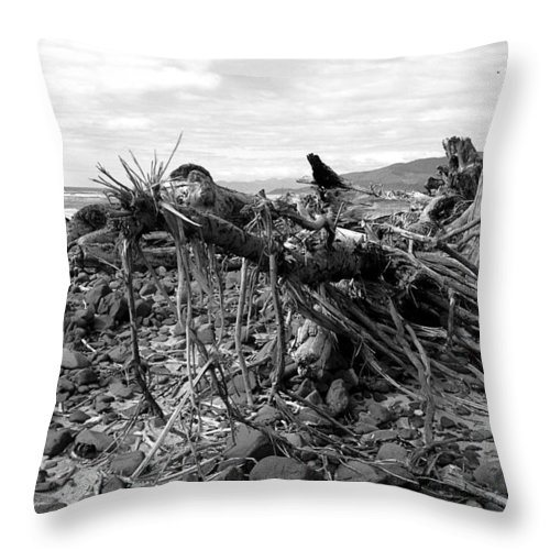 Driftwood Throw Pillow featuring the photograph Driftwood And Rocks by Chriss Pagani
