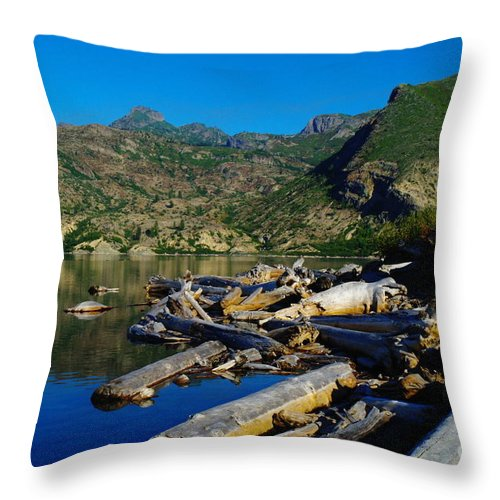 Driftwood Throw Pillow featuring the photograph Driftwood by Jeff Swan