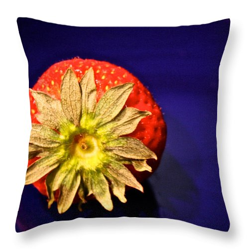 Food Throw Pillow featuring the photograph Dry Top by Susan Herber