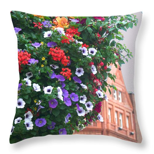 Ireland Throw Pillow featuring the photograph Dublin Beauty by David Resnikoff