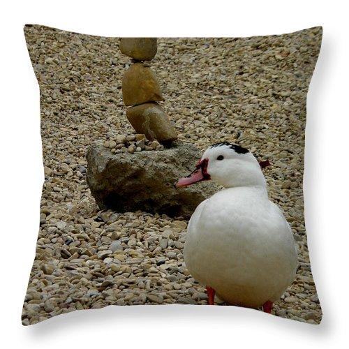 Duck Throw Pillow featuring the photograph Duck With Rock Sculpture by Lainie Wrightson