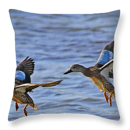 Approach Throw Pillow featuring the photograph Ducks In Flight by Ira Runyan