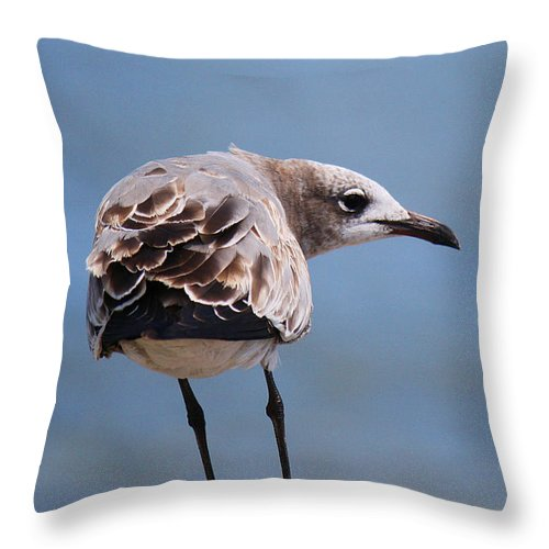 Roena King Throw Pillow featuring the photograph Duuuuuuuuuuude Hiccup by Roena King