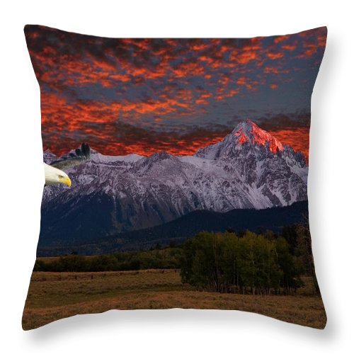 Eagle Throw Pillow featuring the photograph Eagle Fantasy by Steve Stuller