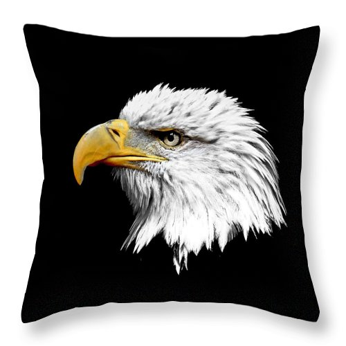 Bald Eagle Throw Pillow featuring the photograph Eagle Profile by Steve McKinzie