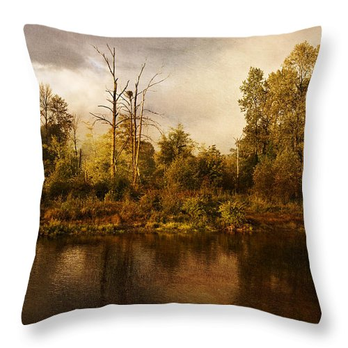 Eagle's Rest Throw Pillow featuring the photograph Eagle's Rest by Wes and Dotty Weber