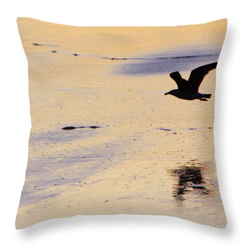 Maine Throw Pillow featuring the photograph Early Morning Flight by Rick Berk