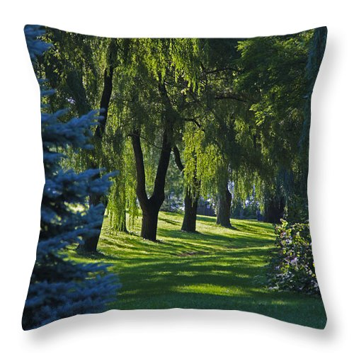 Trees Throw Pillow featuring the photograph Early Morning by John Stuart Webbstock