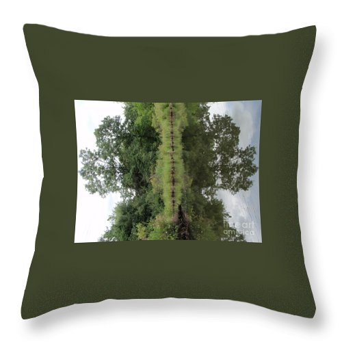 Elephant Throw Pillow featuring the photograph Earth Elephant by Aimee Mouw