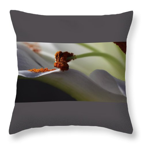 Floral Throw Pillow featuring the photograph Easter Lily by Kume Bryant