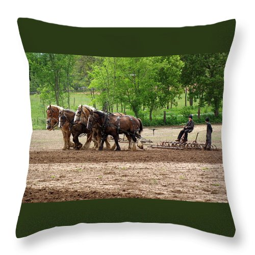 Amish Throw Pillow featuring the photograph Easy Rider by Linda Mishler