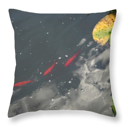 Skull Throw Pillow featuring the photograph Eerie Reflection by Nina Fosdick