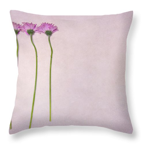 Flower Throw Pillow featuring the photograph Elegy Of Existence by Evelina Kremsdorf
