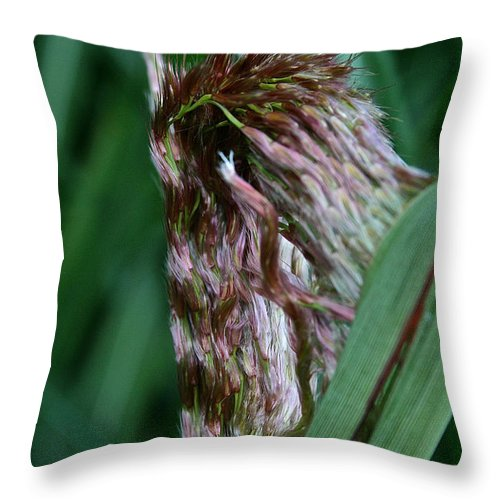 Landscape Throw Pillow featuring the photograph Emergence by Susan Herber