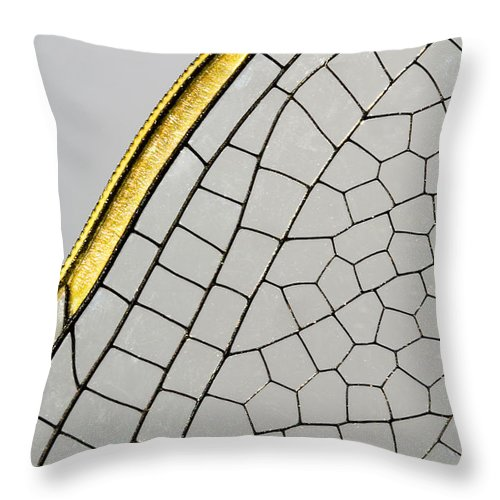 Fn Throw Pillow featuring the photograph Emperor Dragonfly Anax Imperator Wing by Bert Pijs