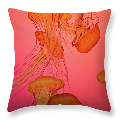 Orange Throw Pillow featuring the photograph Enchanted Jellyfish 3 by Pam Fong