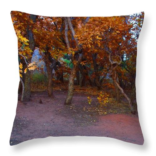 Trees Throw Pillow featuring the photograph Enchanted Woods by Brandi Christon