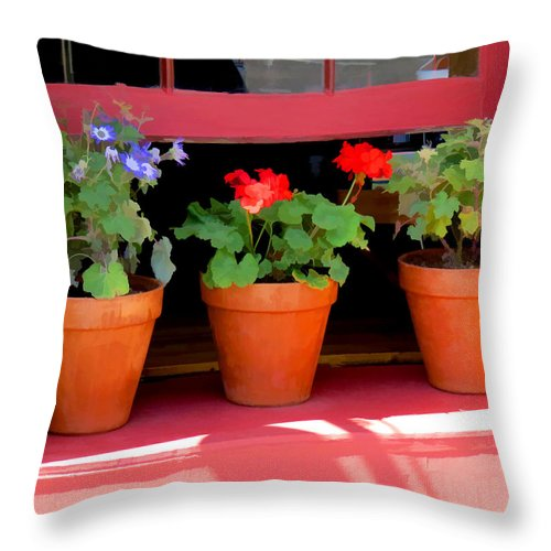 Window Throw Pillow featuring the photograph Enchanting by Diane Wood