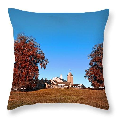 Erdenheim Farm In Autumn Throw Pillow featuring the photograph Erdenheim Farm In Autumn by Bill Cannon
