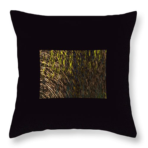 Throw Pillow featuring the painting Eris - Macro1 by Christopher Gaston